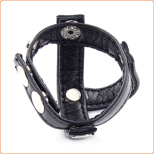 Leather and steel cock ball ring